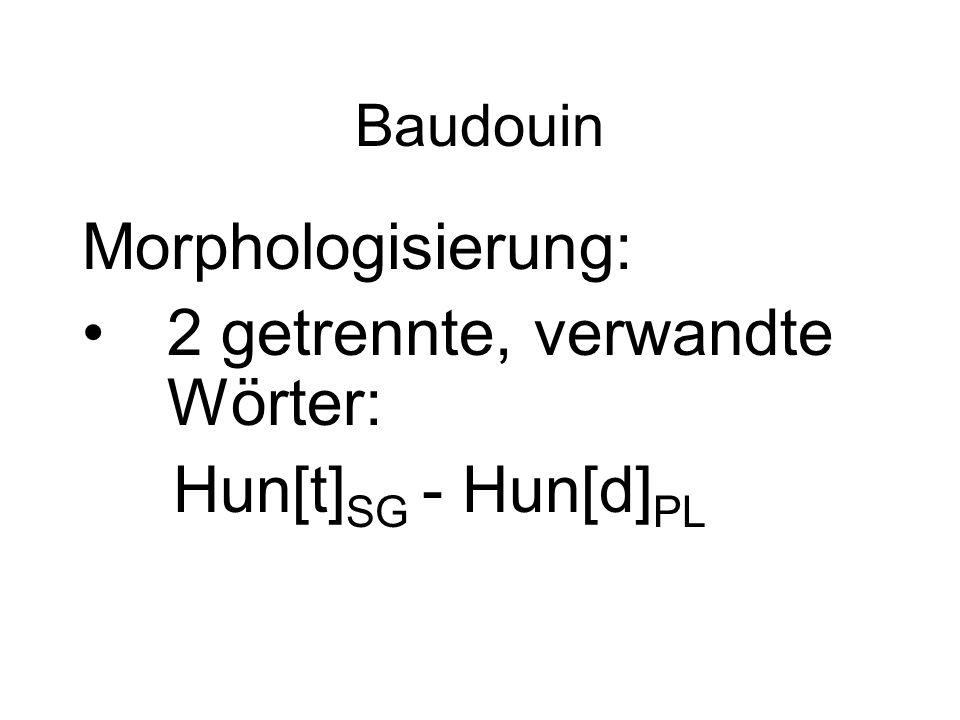 2 getrennte, verwandte Wörter: Hun[t]SG - Hun[d]PL